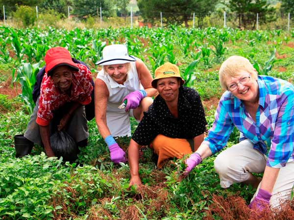 Africa's Gift working in the field